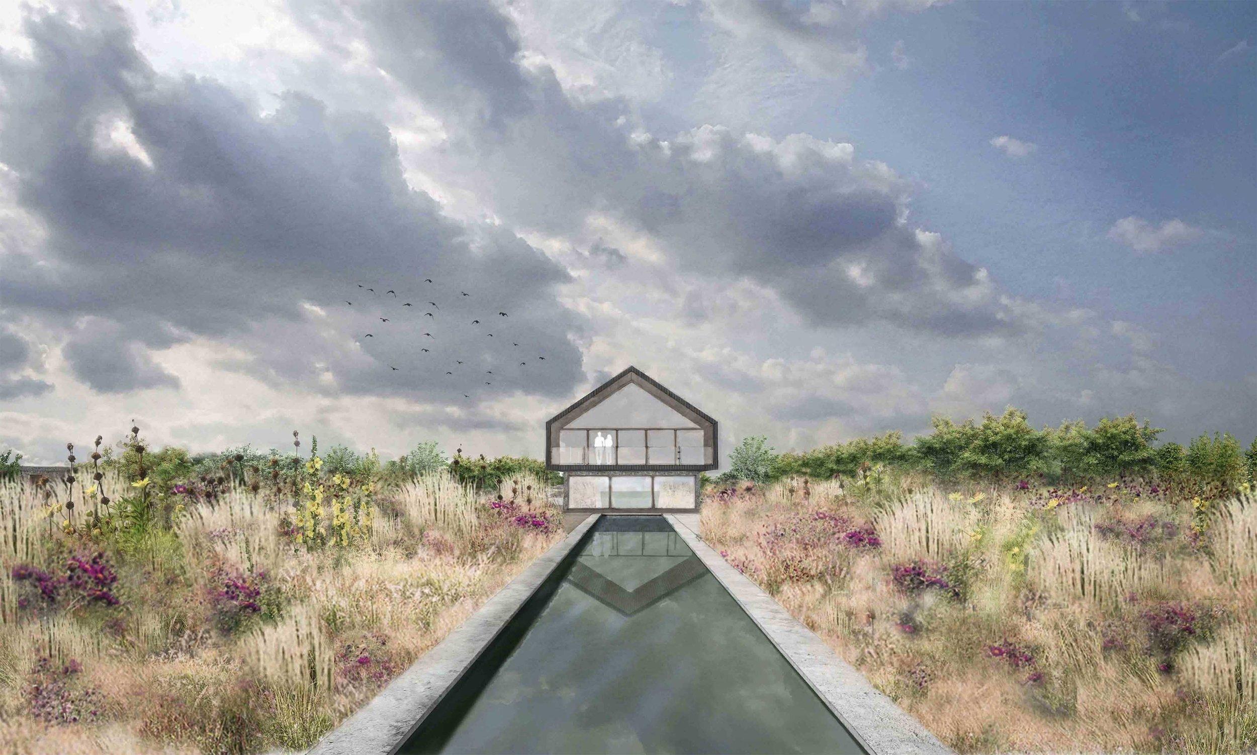 modern architecture garden design swimming pool planting.jpg