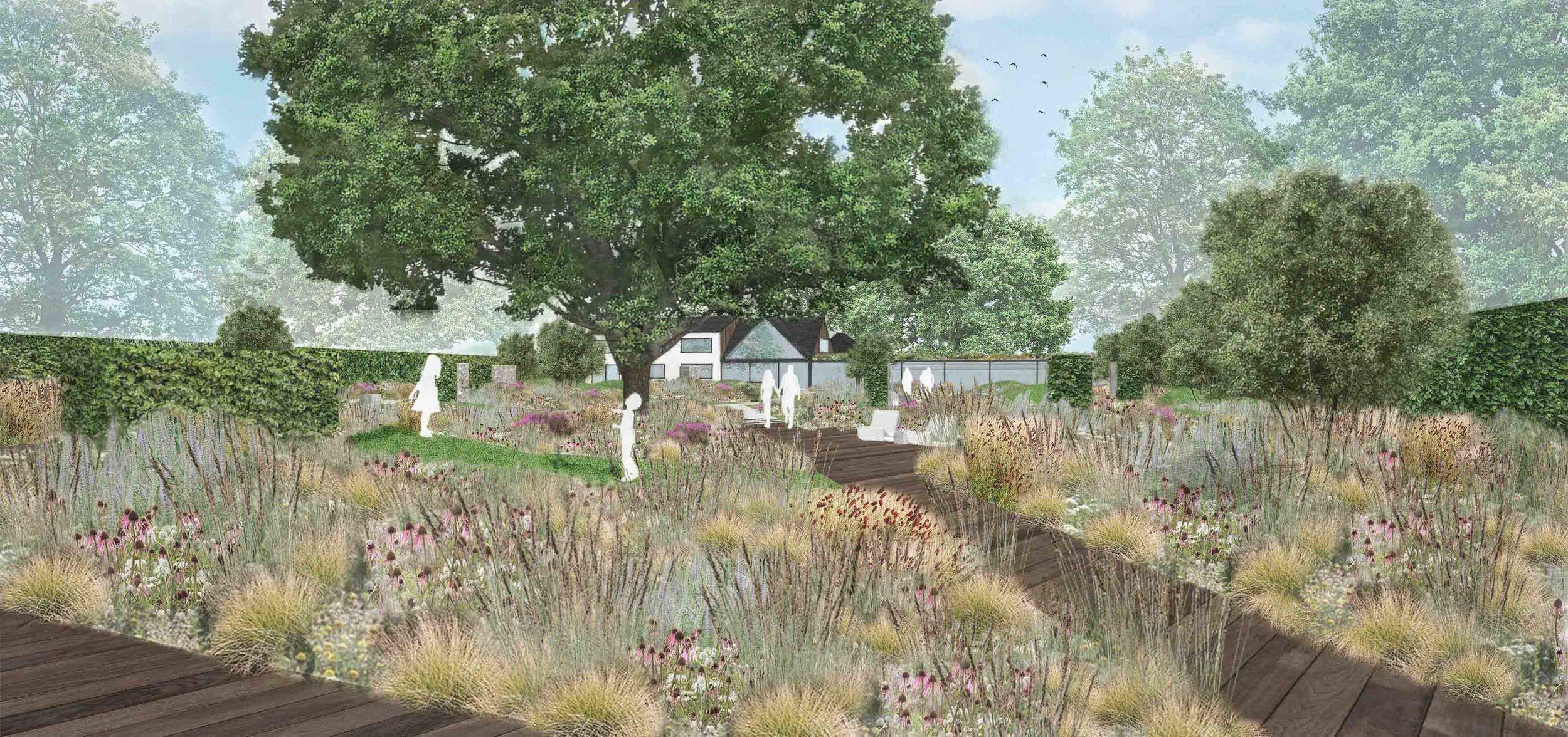 contemporary family garden ornamental meadow oak tree.jpg