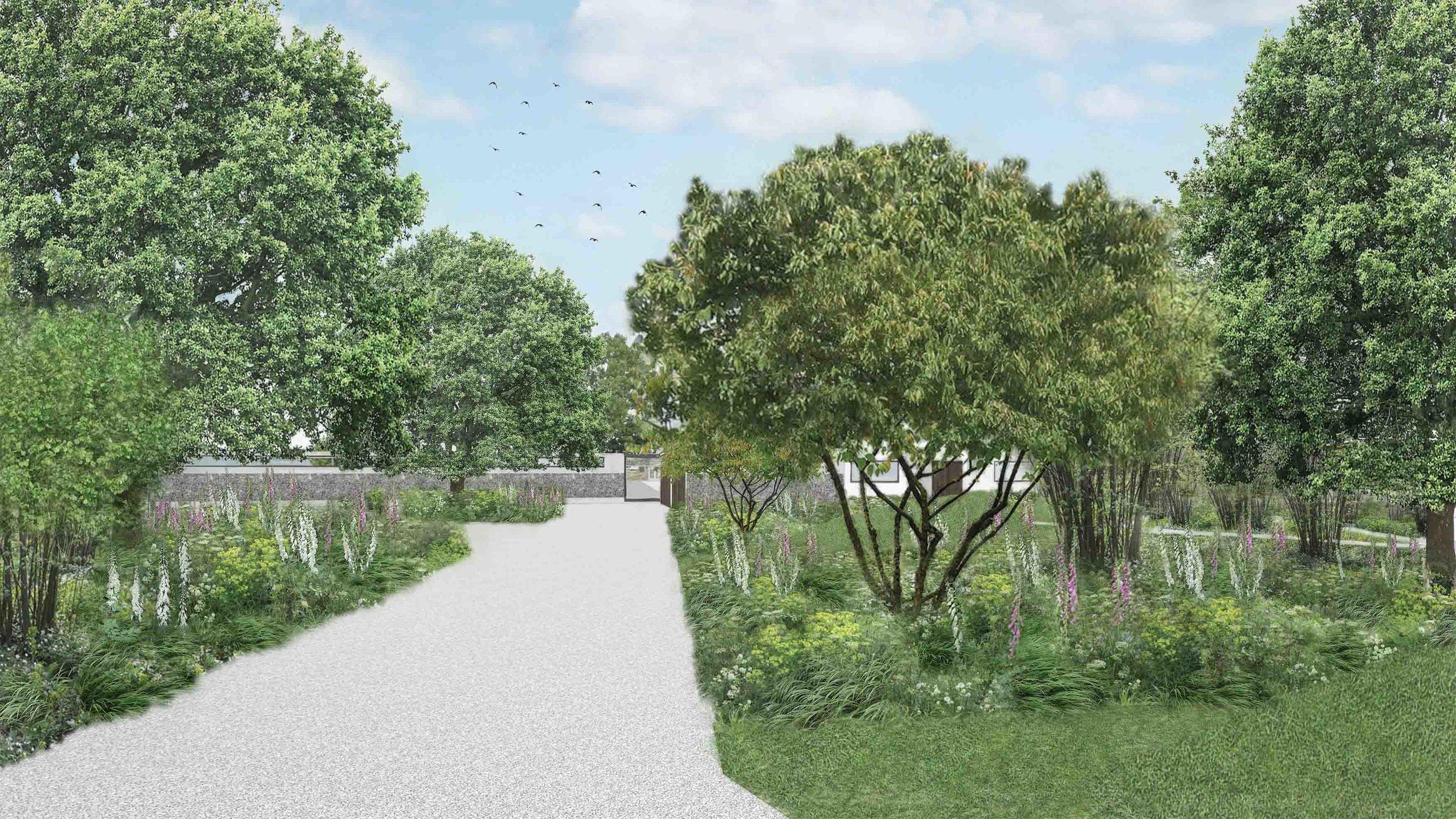 modern architecture woodland garden.jpg