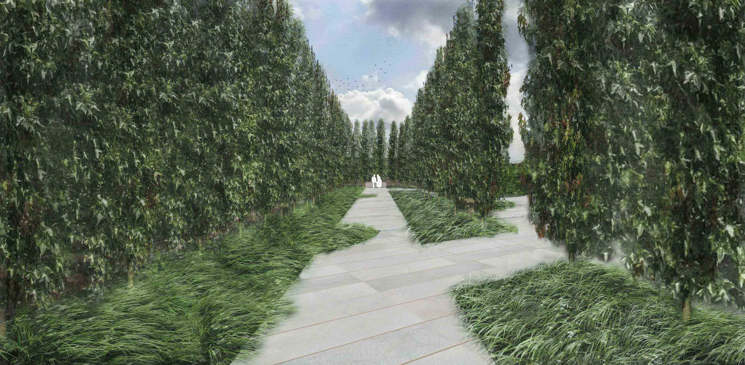 Liquidamber avenue of trees contemporary georgian garden design.jpg