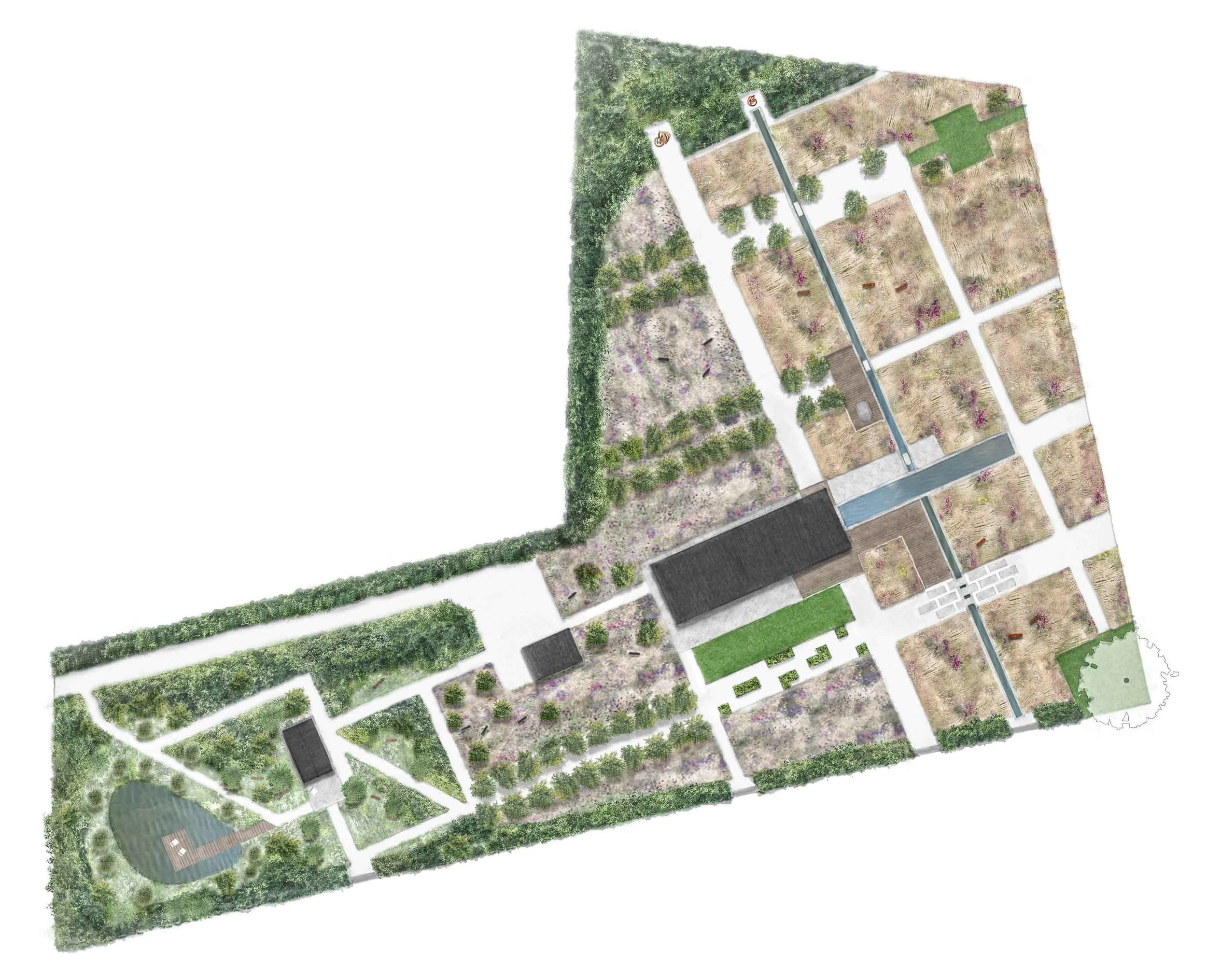 modern country garden suffolk masterplan.jpg