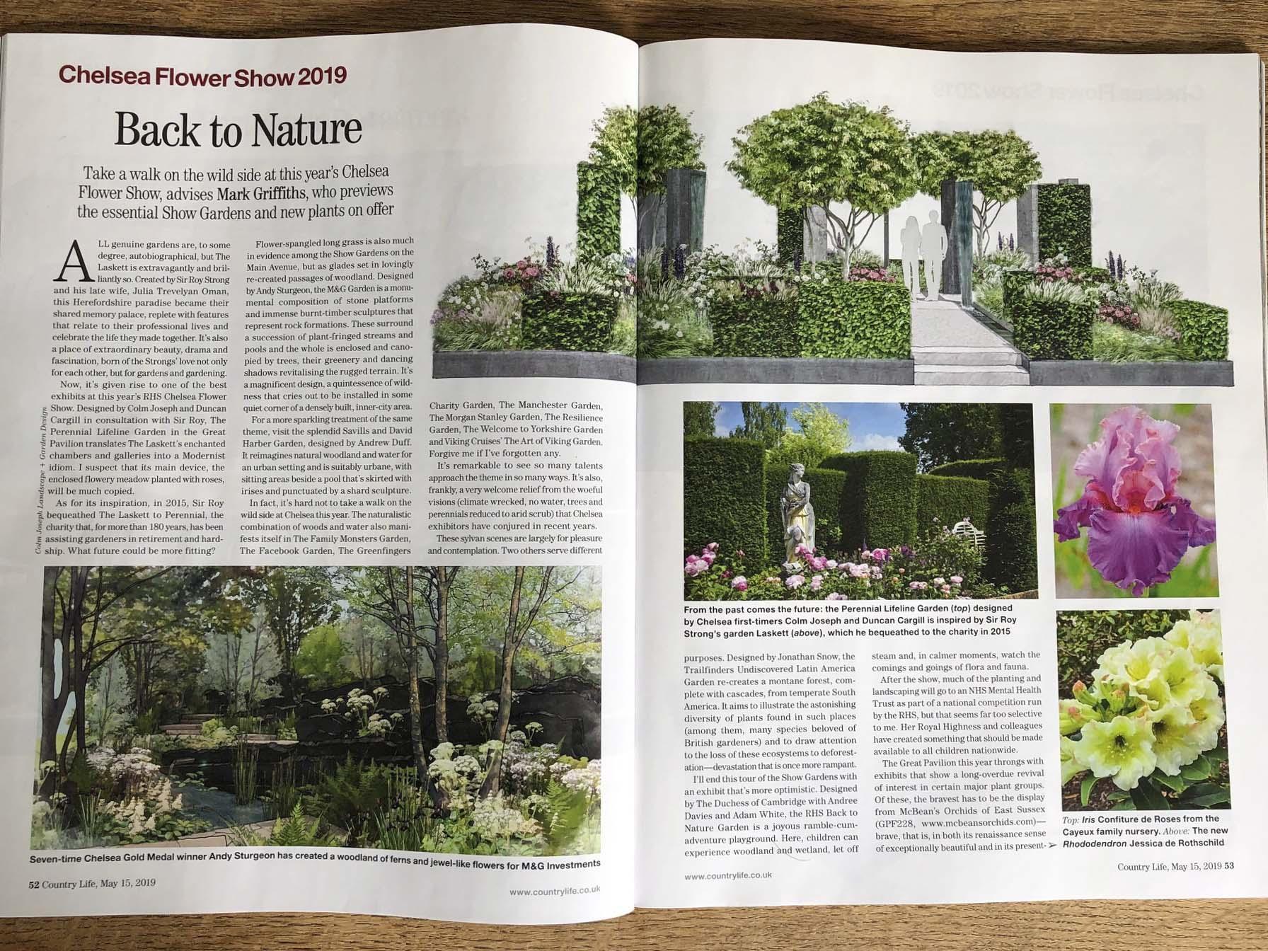 Country Life magazine Colm Joseph garden design cambridge.jpg