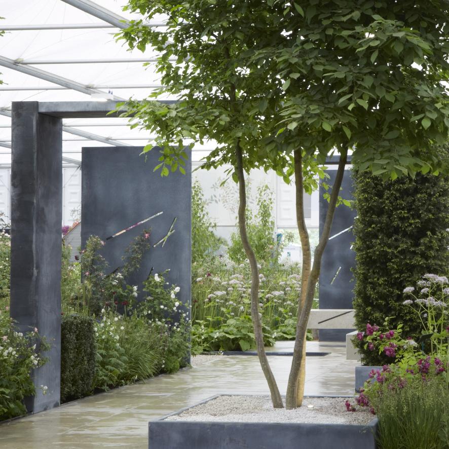 Colm Joseph Gardens RHS Chelsea award-winning garden designer Cambridge.jpg