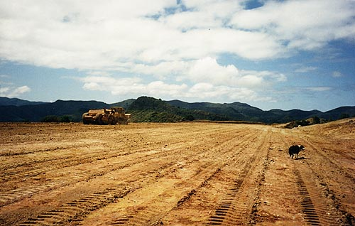 airfield8.jpg