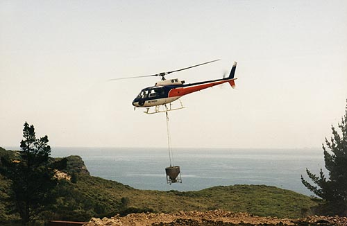 chopper2.jpg