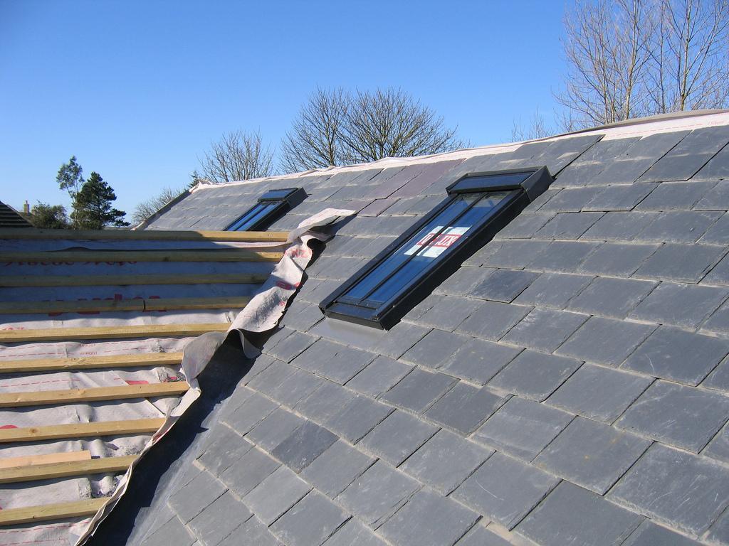Solar Panel Skylight