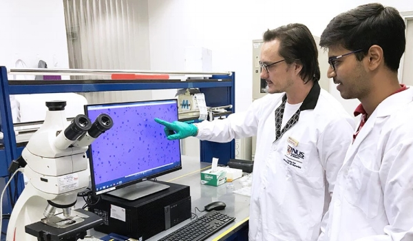 Researchers from the NUS Centre for Advanced 2D Materials assess the quality of graphene samples  (Credit: National University of Singapore)