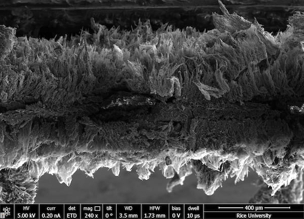 Seen in an electron microscope image, micron-scale sheets of graphene created at Rice University form a two-layer air filter that traps pathogens and then kills them with a modest burst of electricity. Courtesy of the Tour Group