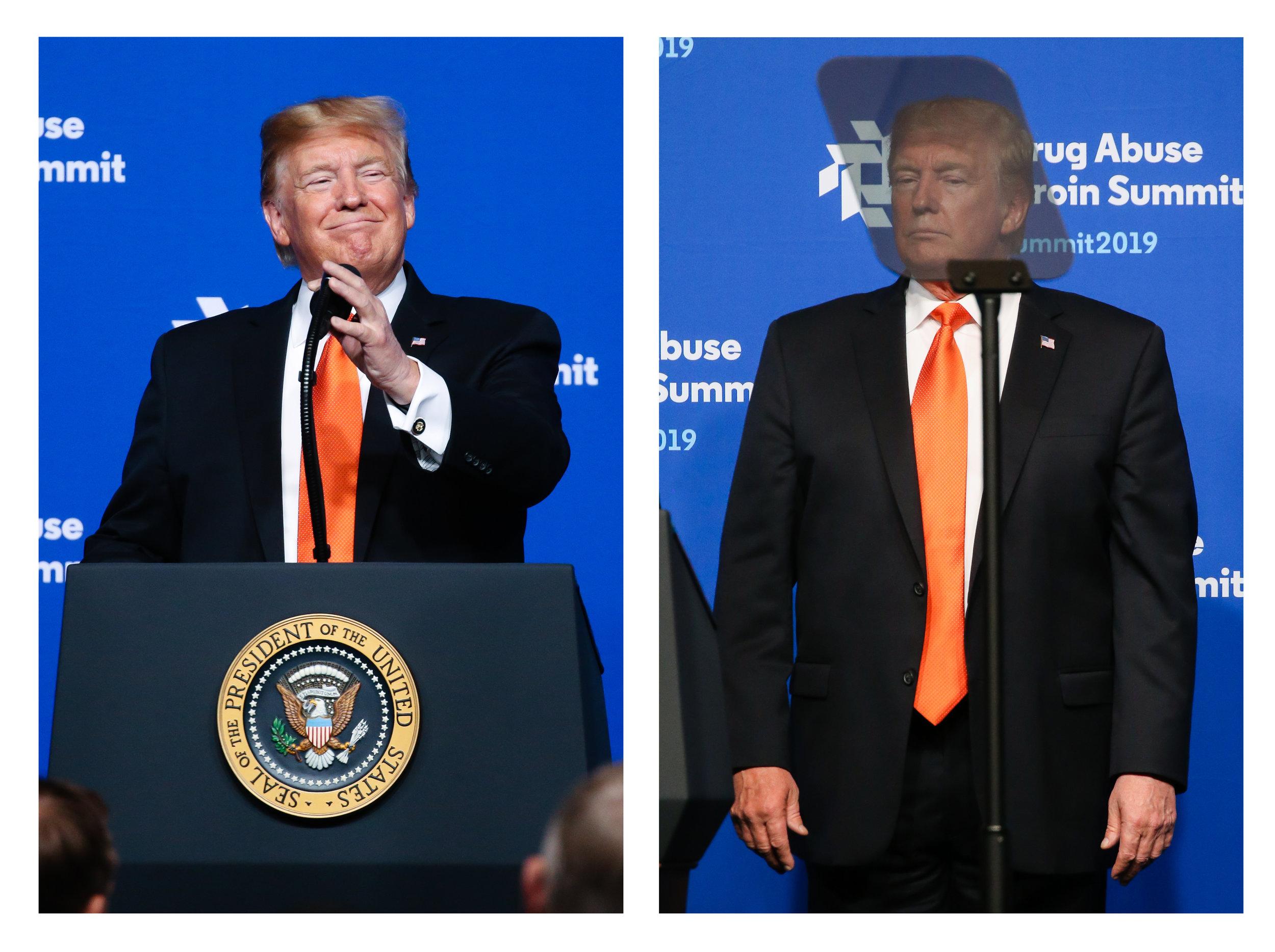 Trump diptych.jpg