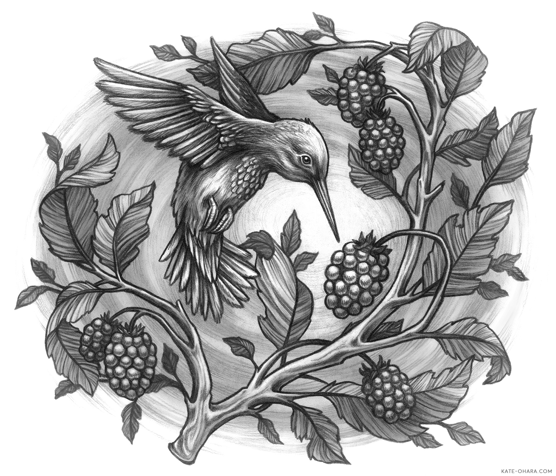 KateOHaraGreenprintsHummingbird.jpg