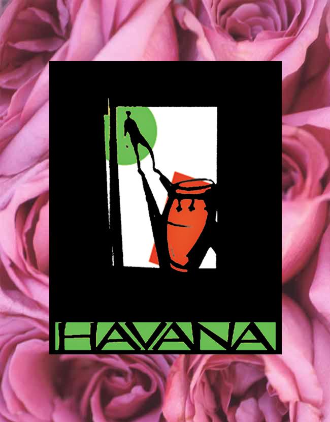 Havana Valentines Newsletter 2019.jpg