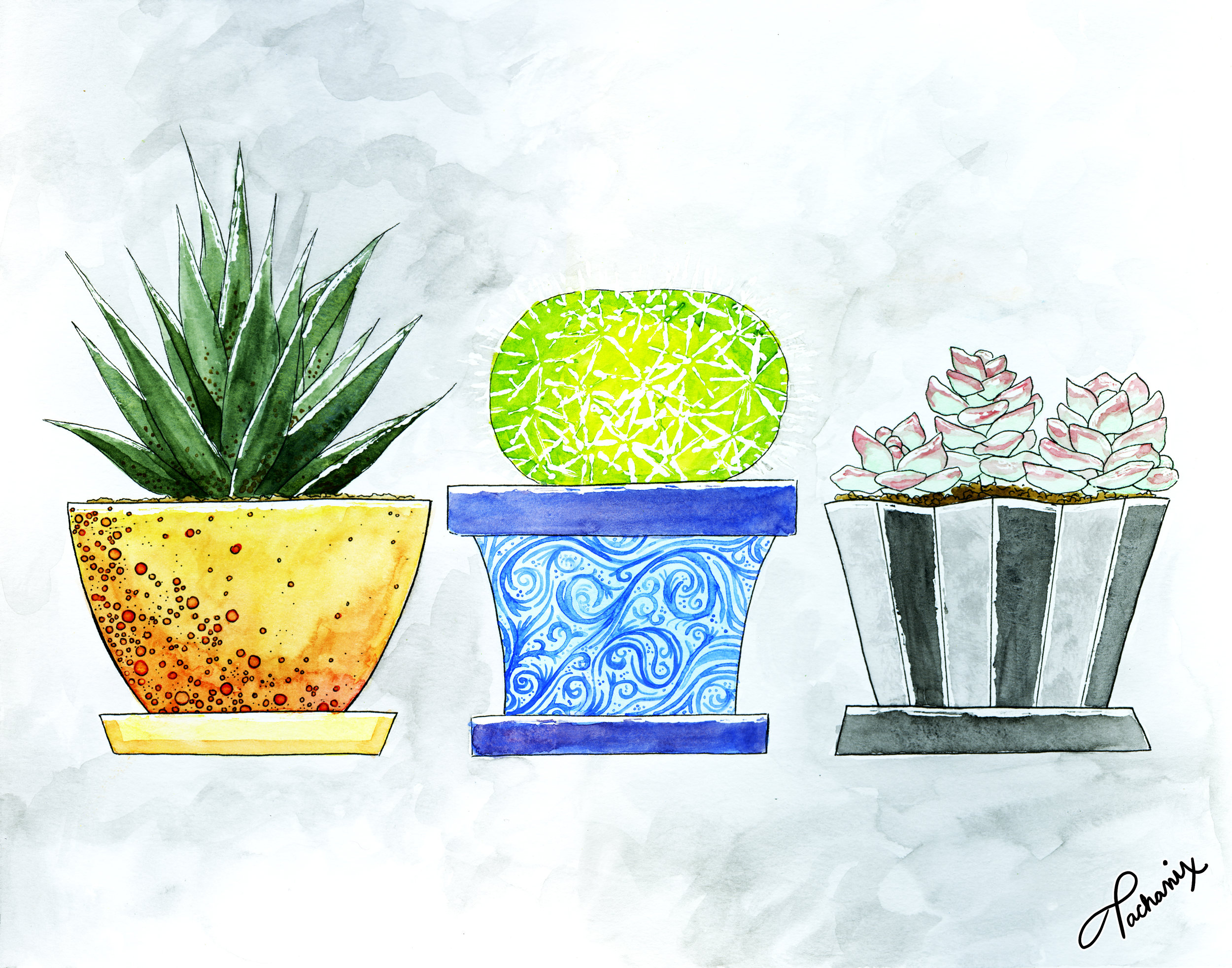 11X14_Plants_PRINT_5.jpg
