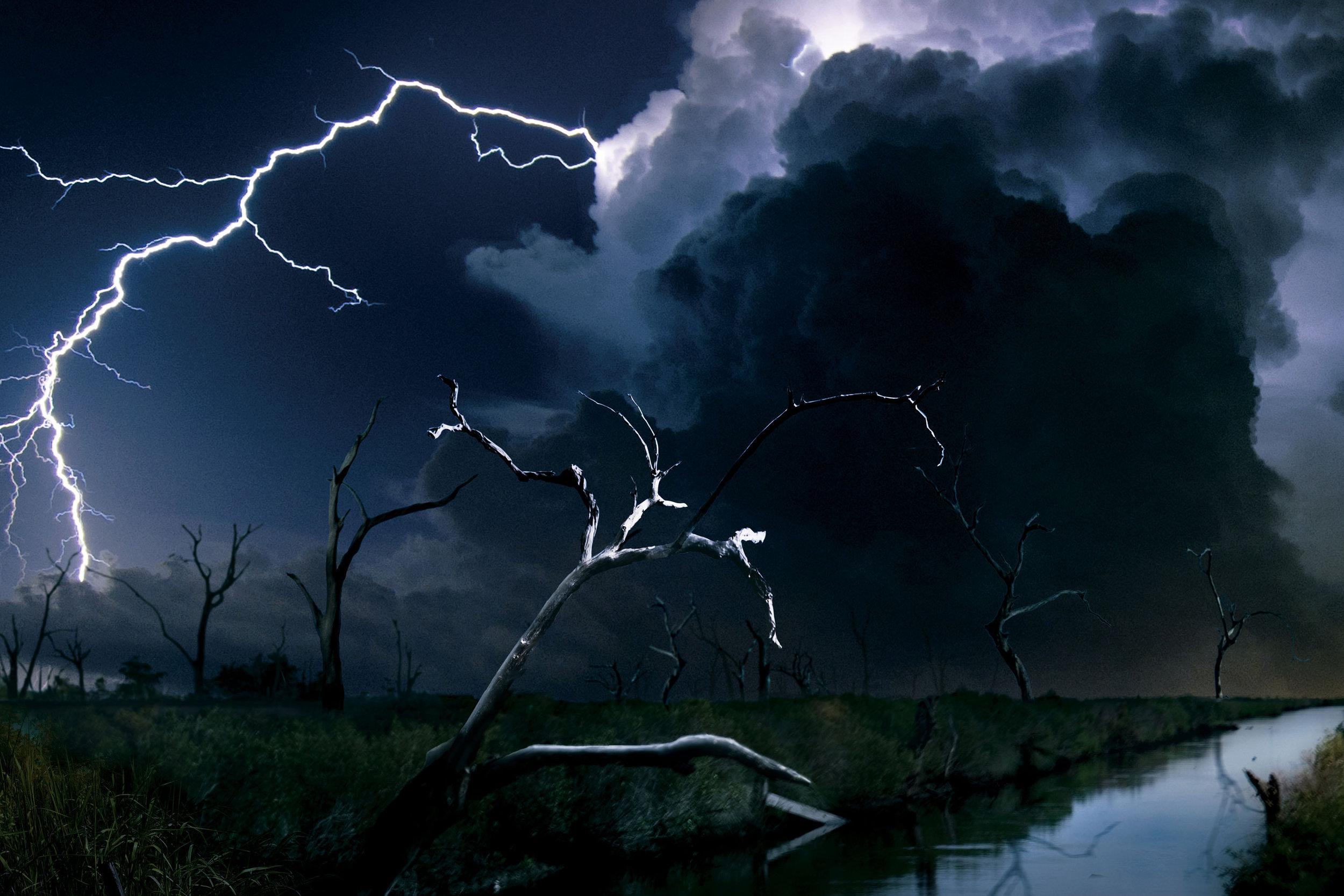 texas killing fields trees director ami canaan mann.jpg