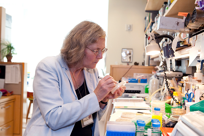 elizabeth-blackburn-in-the-lab.jpg
