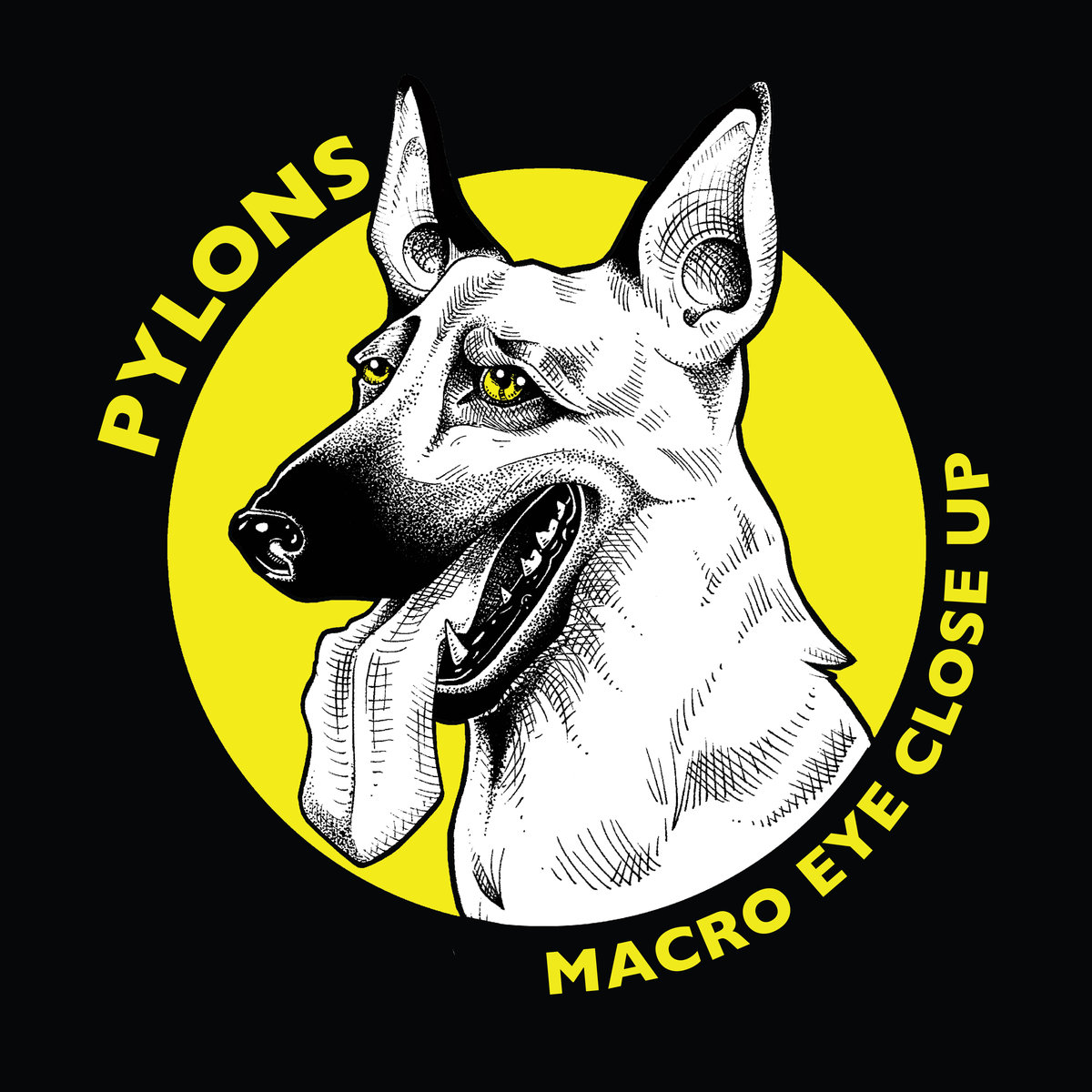Pylons - Macro Eye Close Up March 2ndThe Chicago punk quartet impressed us with this sophomore effort. (They were our first interview, way back in March.) A quick eight tunes of constant rock joy, Sam Fadness' scowling snarl balanced with Gretchen Hannum's killer scream makes for one of our favorite punk albums and signaled the start of a great year for the young band. Give Macro Eye Close Up a listen and you'll understand. Then catch em live on January 4th at Livewire Lounge for a $5 cover, or at The Empty Bottle opening for Slushy on January 10th. Tix are $8.-KPL
