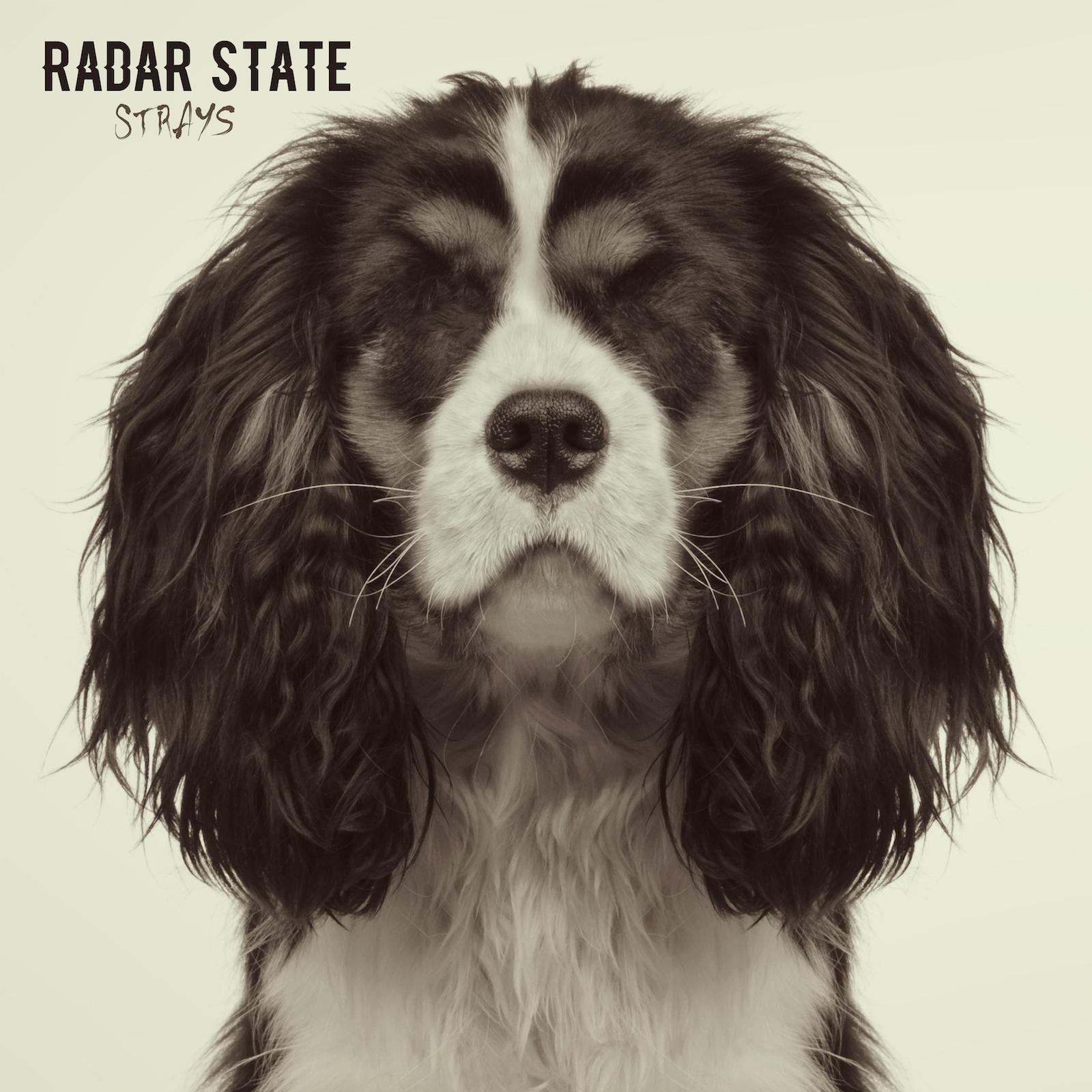 radar state.jpg