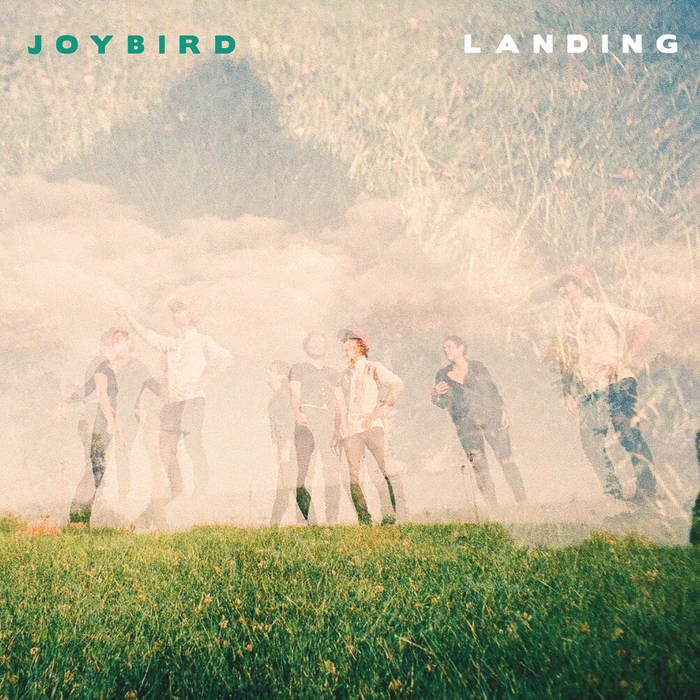 joybird.jpg