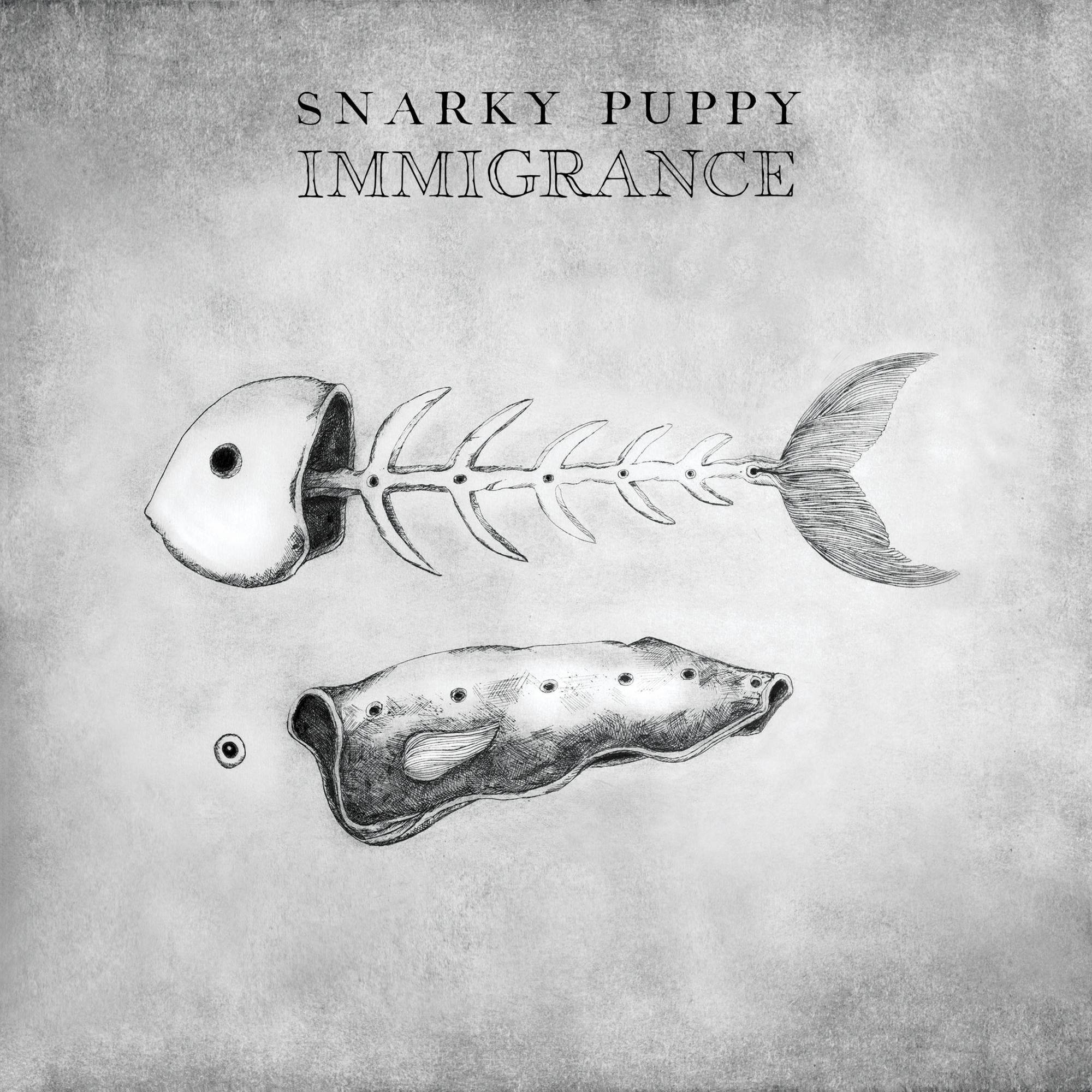 snarky puppy.jpg