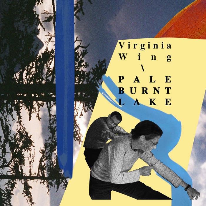 Virginia Wing.jpg