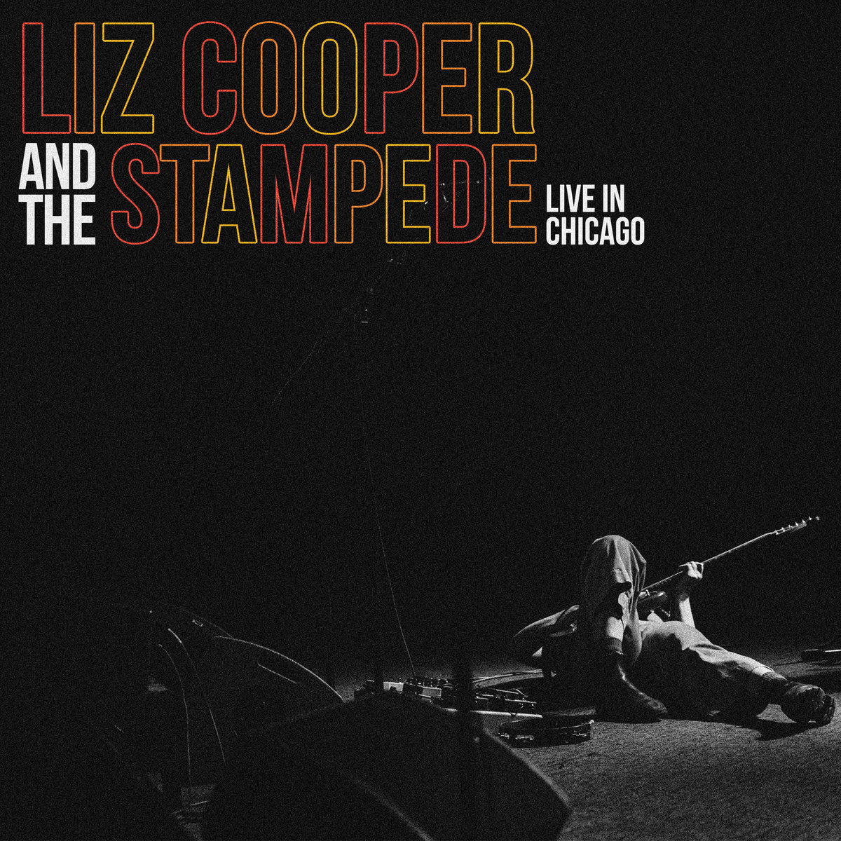 liz cooper _ the stampede.jpg