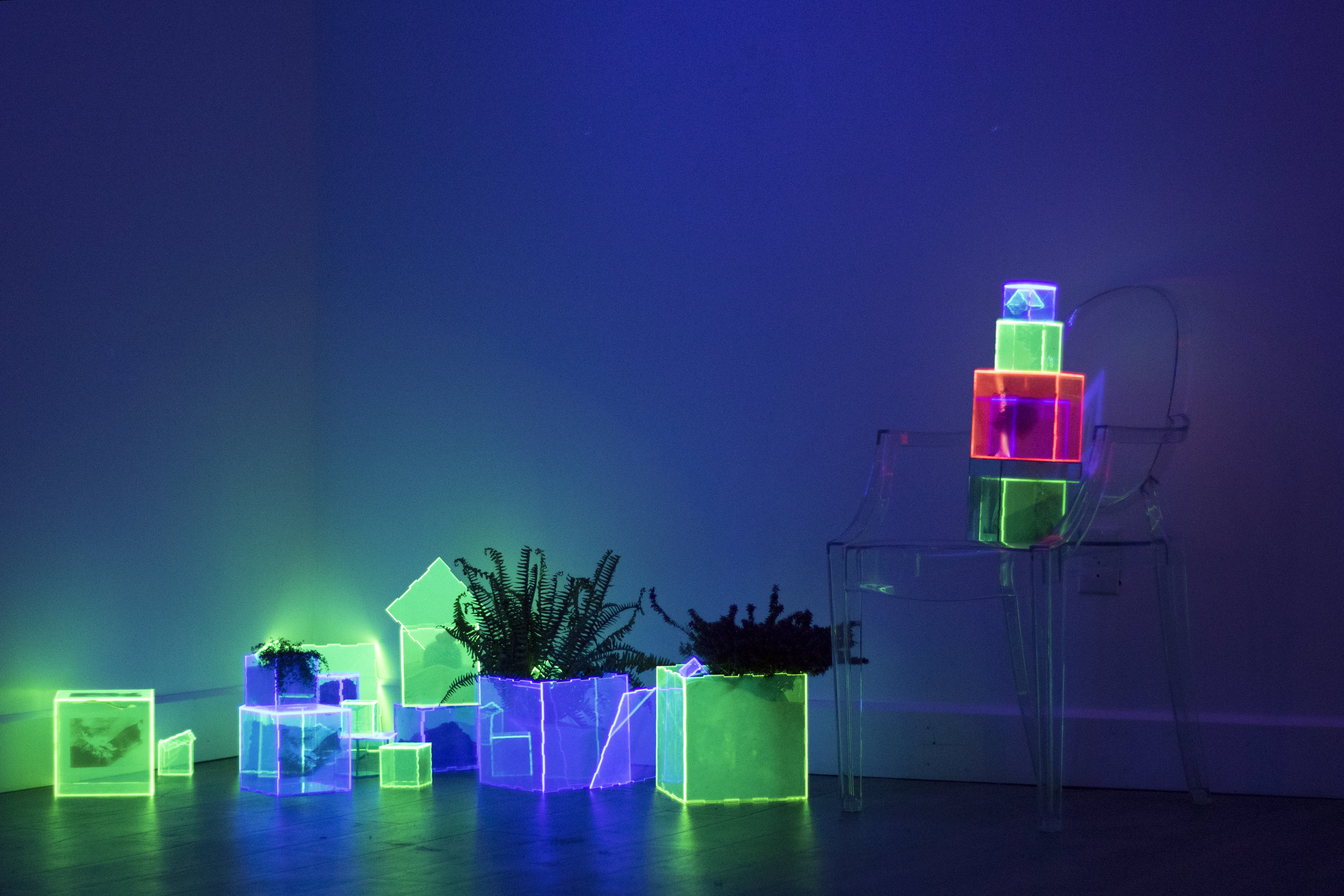 wet plates printed on fluorescent acrylic, acrylic boxes, chair, sand, dirt, and plants
