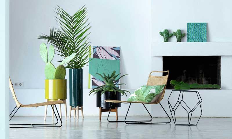 plants design.jpg