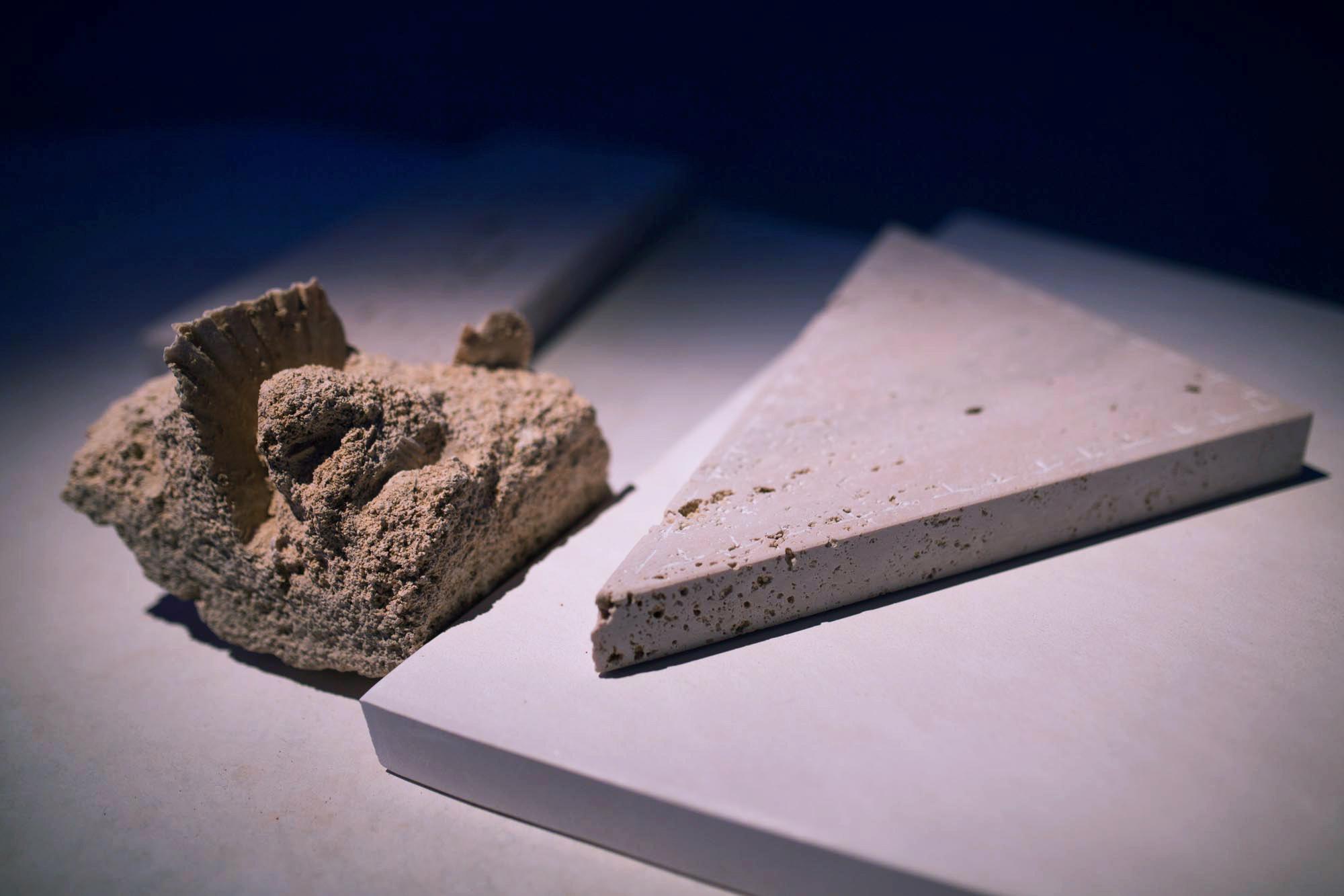 detail: limestone fossils, Tunisian marble