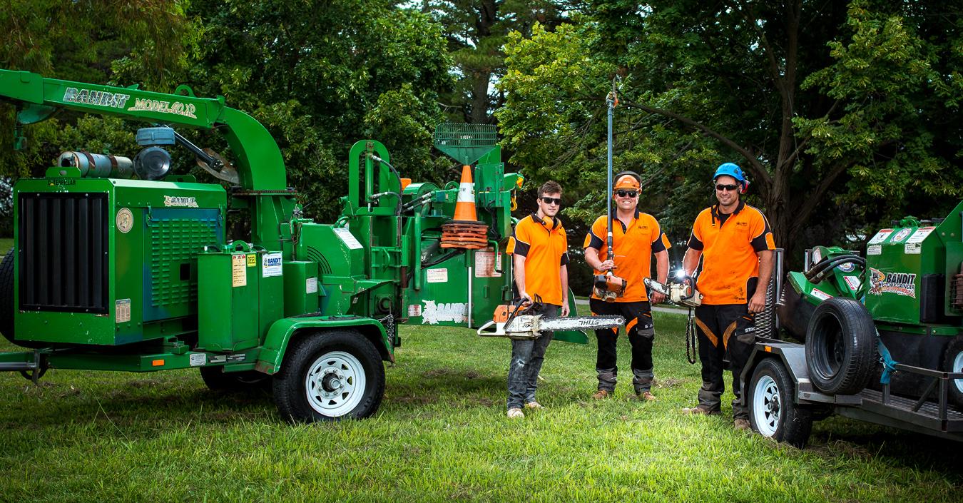 Stump'd Tree Services Canberra Team 2