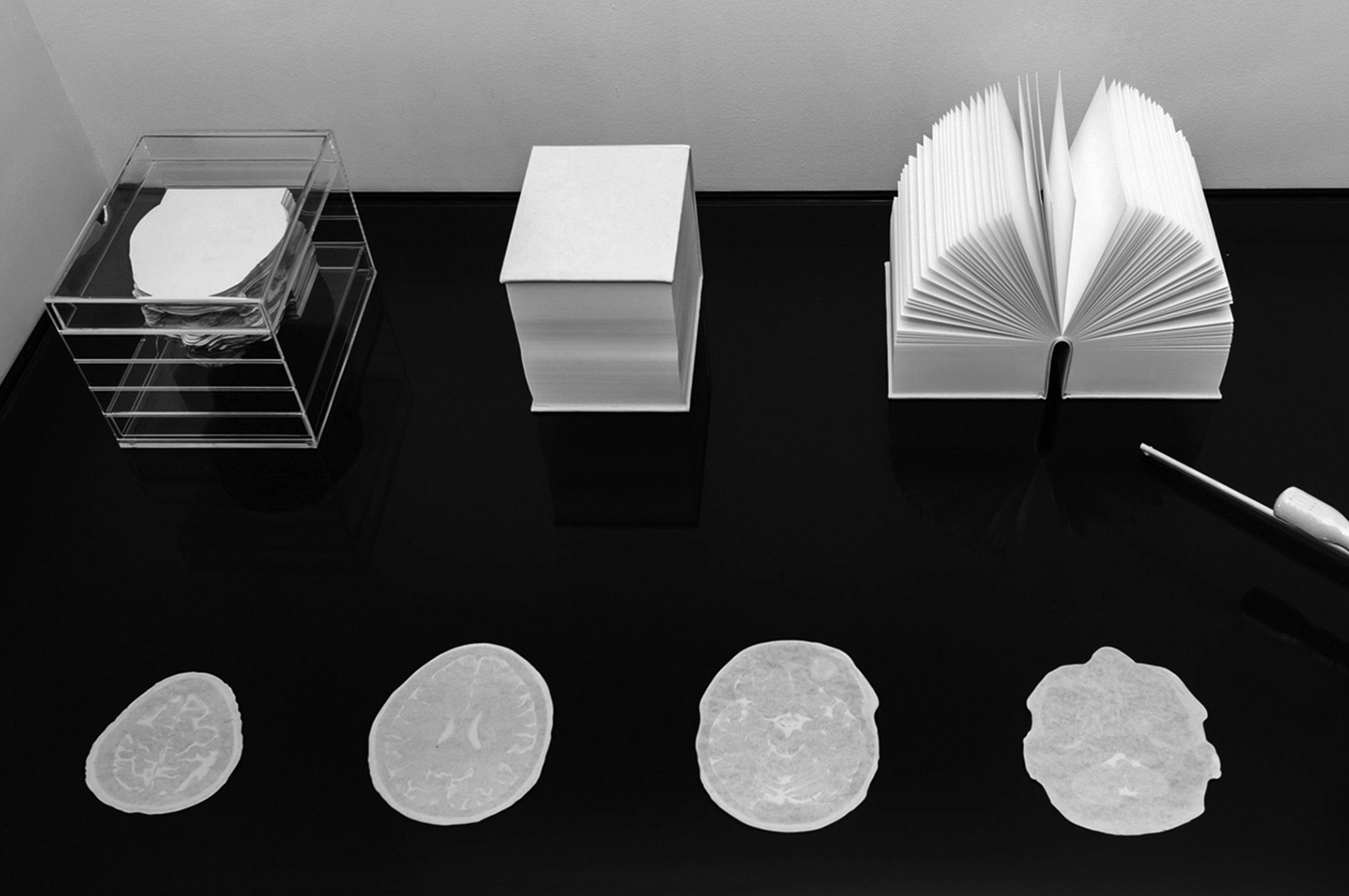 Paper-Brains-78_bw.jpg
