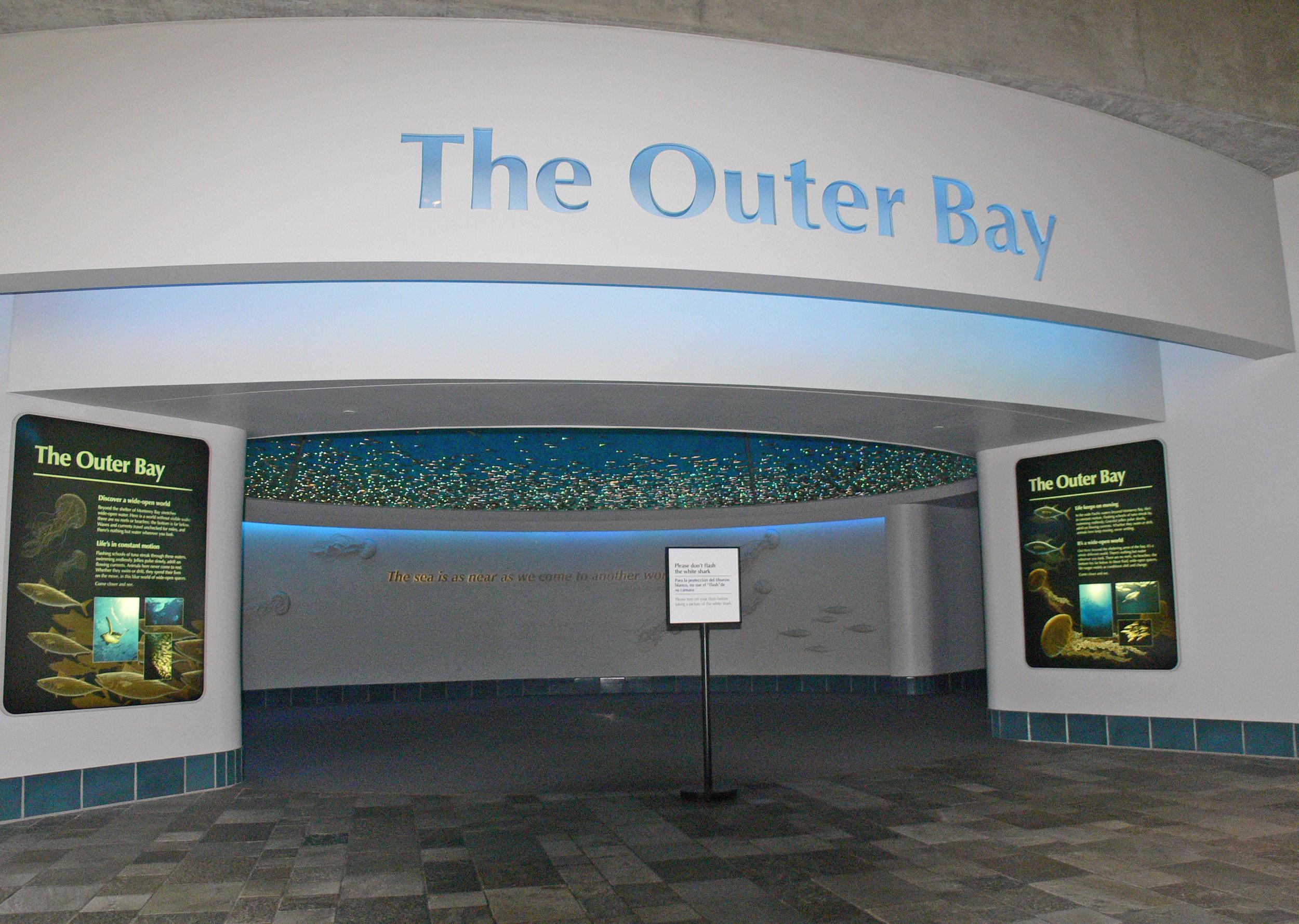 outer bay1.JPG