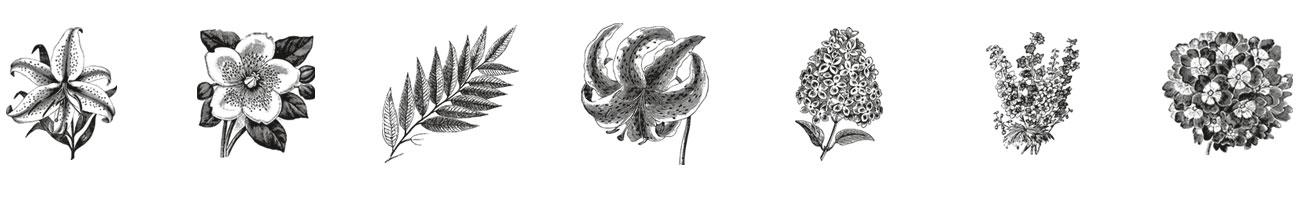 BricknBarn-flowers.jpg