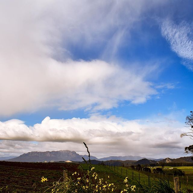 If your thought #Melbourne had four seasons in one day, how about four seasons in one pic?! Northern #Tasmania's #weather is notoriously unpredictable, but the good news is the sunshine is never far away!  From Mt Roland; the capital of your #thisiscradlecountry #microadventure.  #stayinport #devonporttas #discovertasmania #tassiestyle #spiritedtraveller #tasmaniagram #tassie #brandtasmania #cradlecoast #cradlecoasttasmania