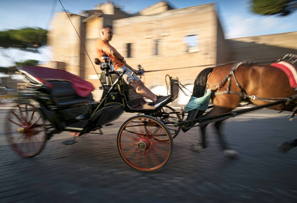 chariot-too.jpg