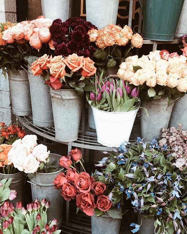 Pretty flowers outside Liberty London to brighten up a dull rainy day 🌷 . . . . . . #flowers #springflowers #springflorals #libertylondon #brightflowers #brightflorals #influencerdigital #centrallondon #influencermarketingagency #influencermarketingtips #blogging #socialmedia #socialmediamarketing #socialmediainfluencer #influencer #london #influenceragency