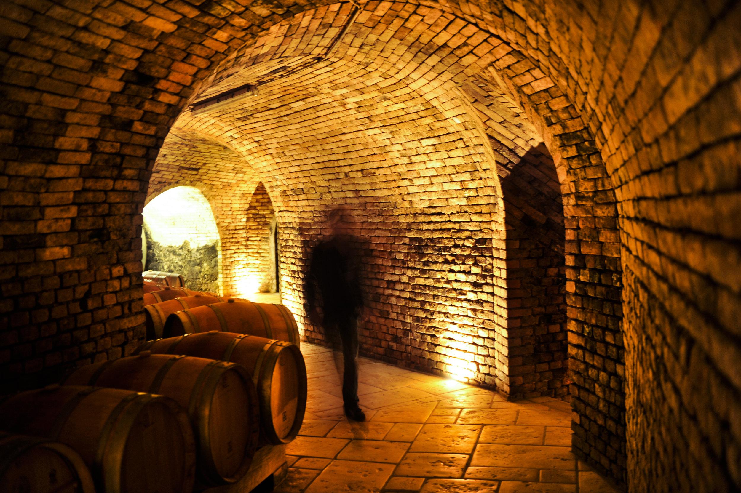 ....Harald im Keller-immer und überall zur gleichen Zeit..Harald in the cellar....