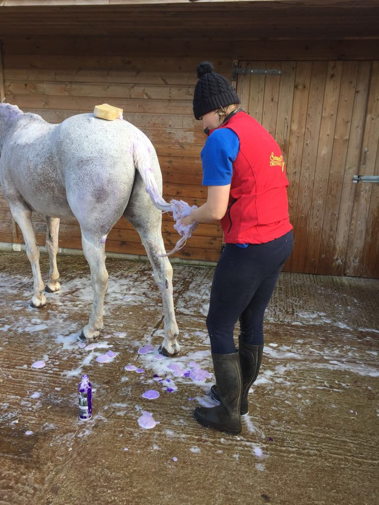 Christa washing 2.JPG