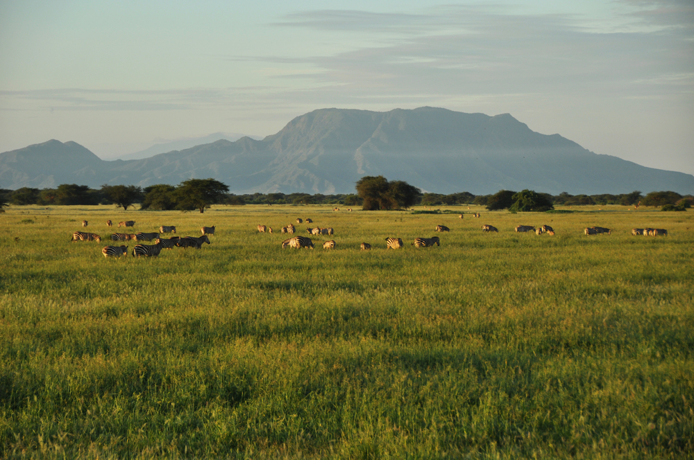 soralo-hectares.jpg