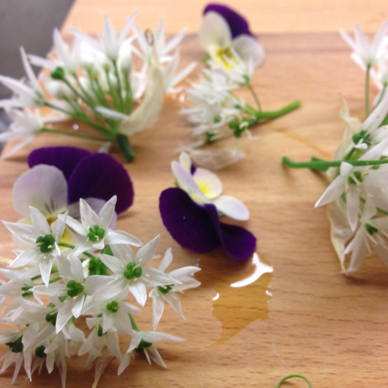 Garlic flowers & violas
