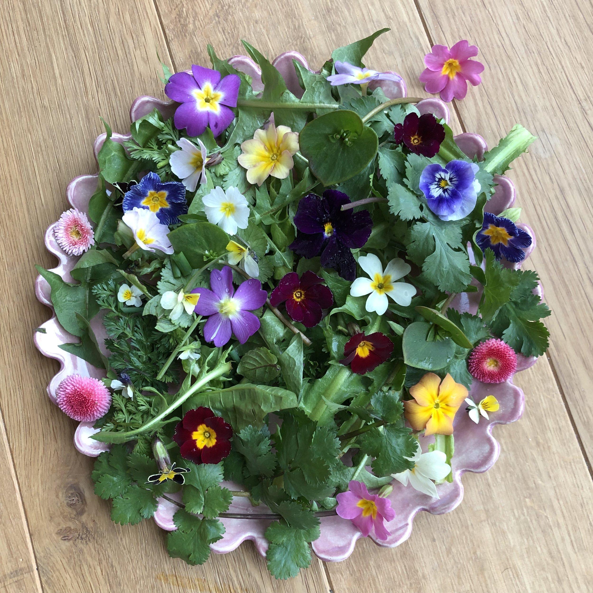 Spring salad special from Botanika