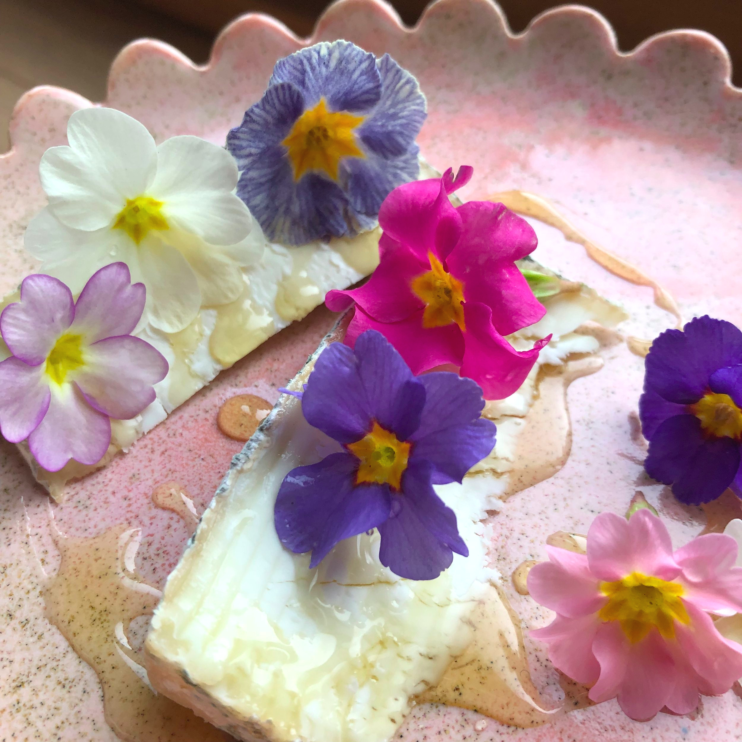 Cheese platter with edible primulas and honey