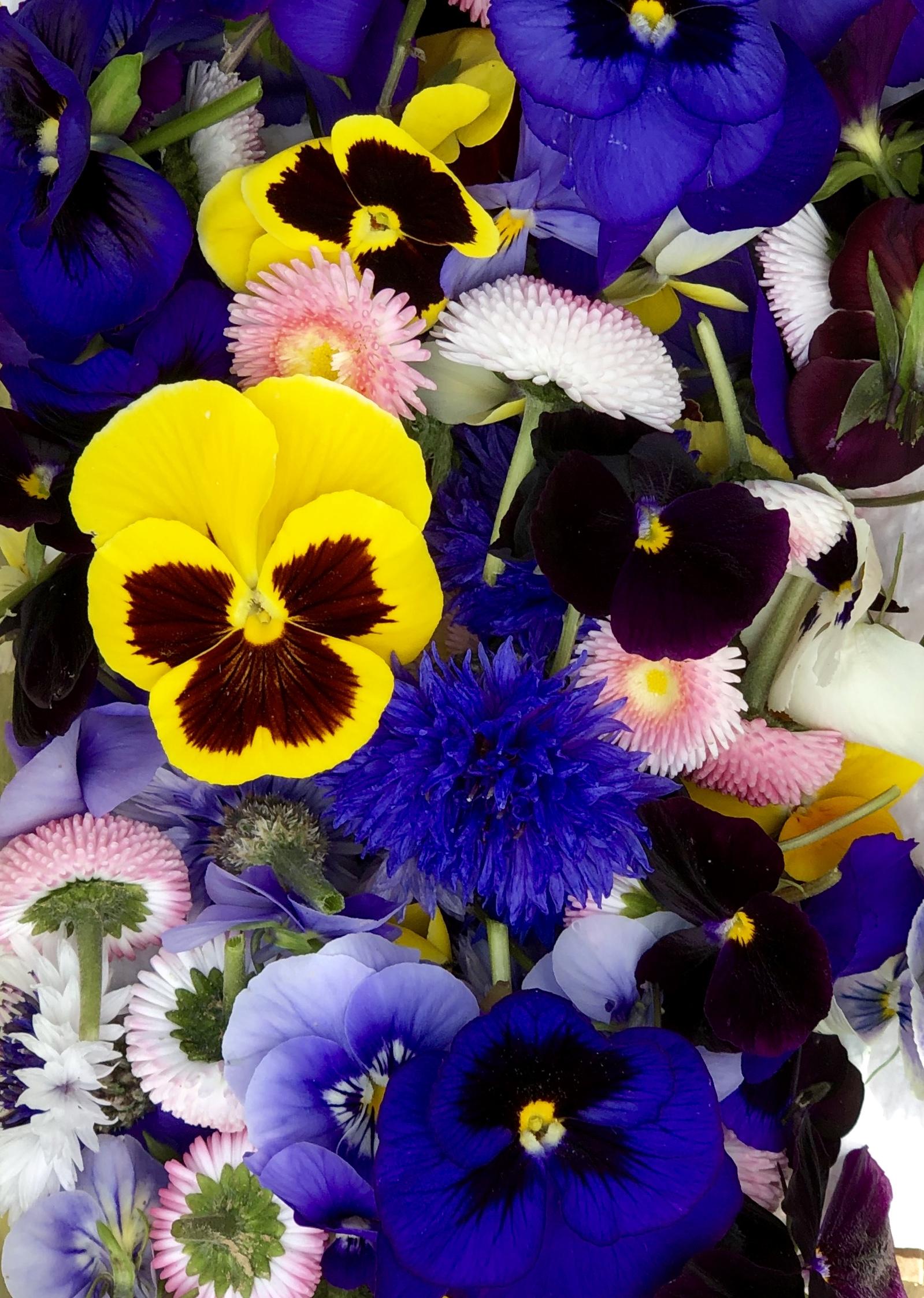 REF:104   boîte de fleurs mixte de saison(55 pieces)  seasonal mixed flower box