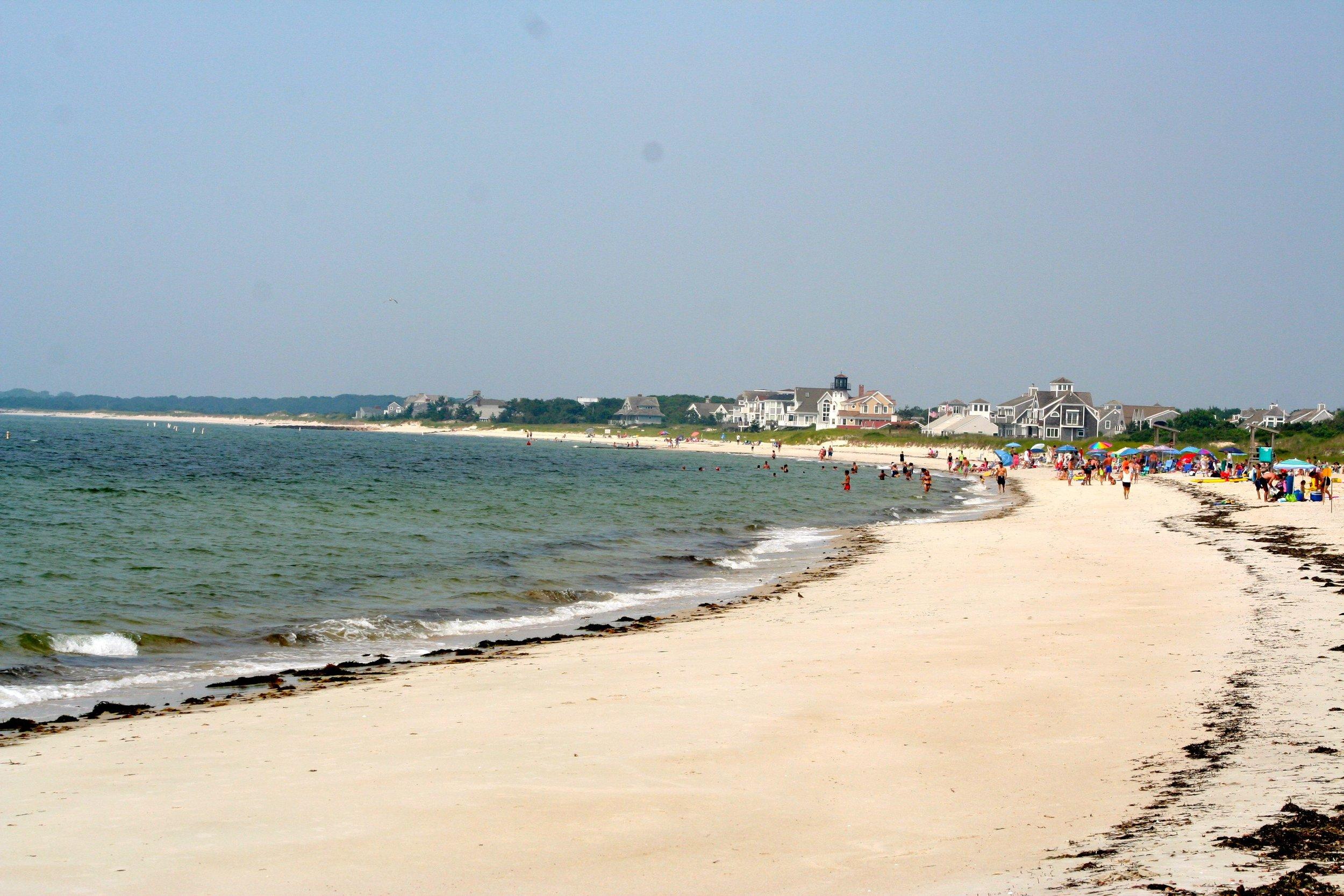 seagull beach.jpg