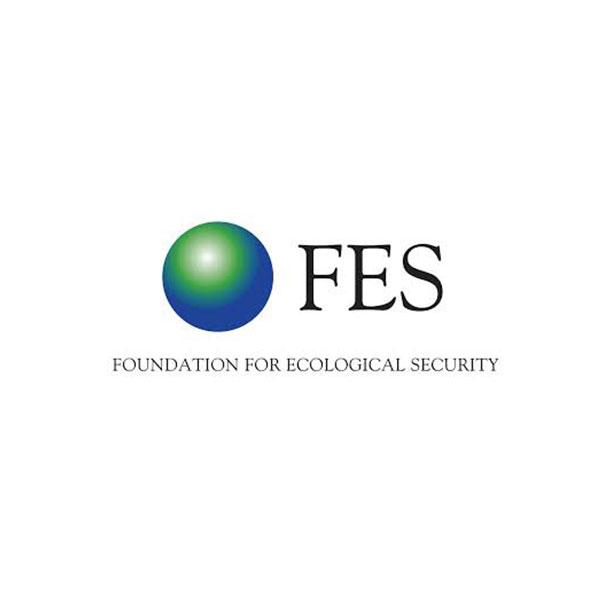 FES-logo.jpeg
