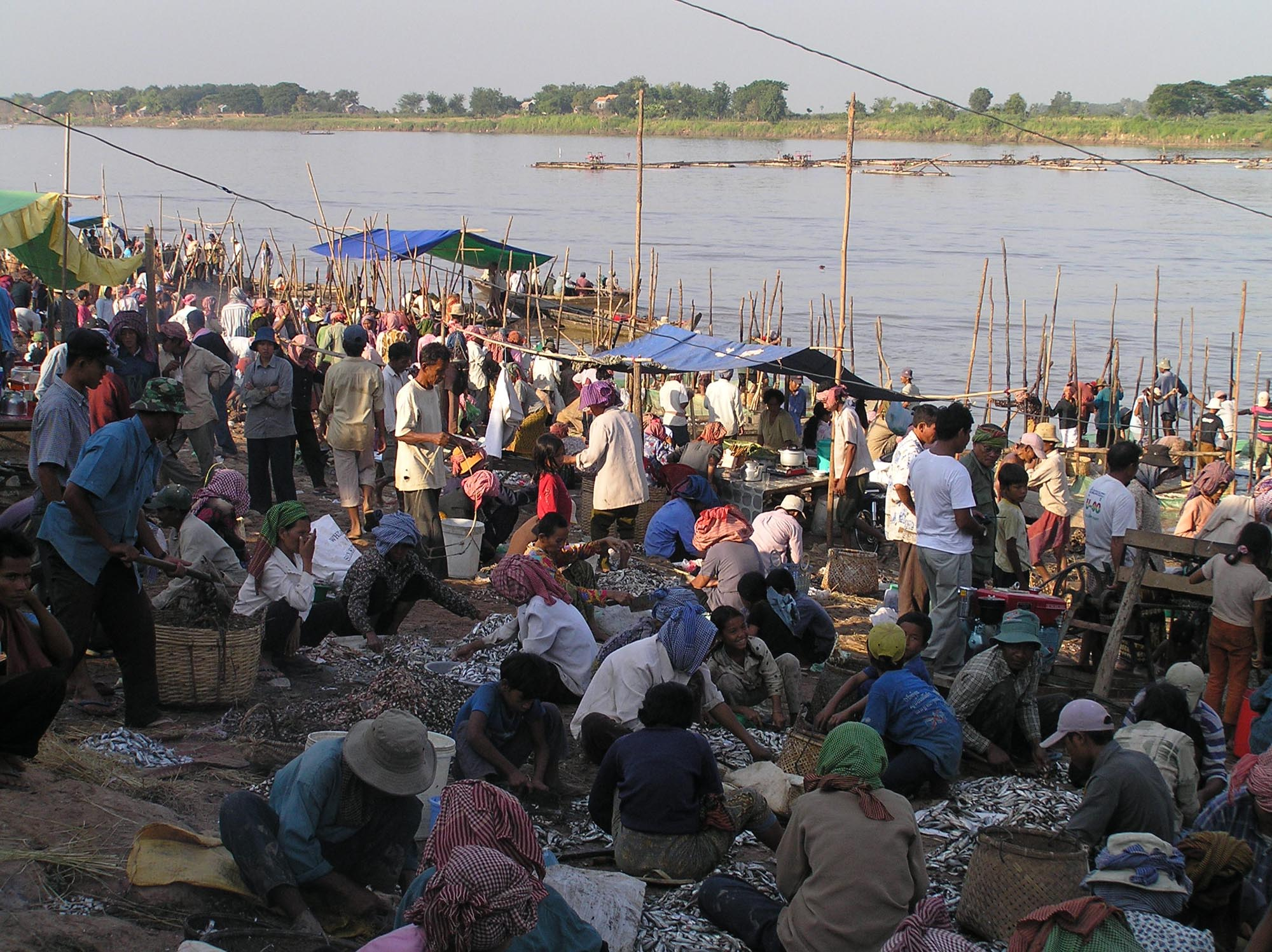 Shoreline market, Tonle Sap Lake