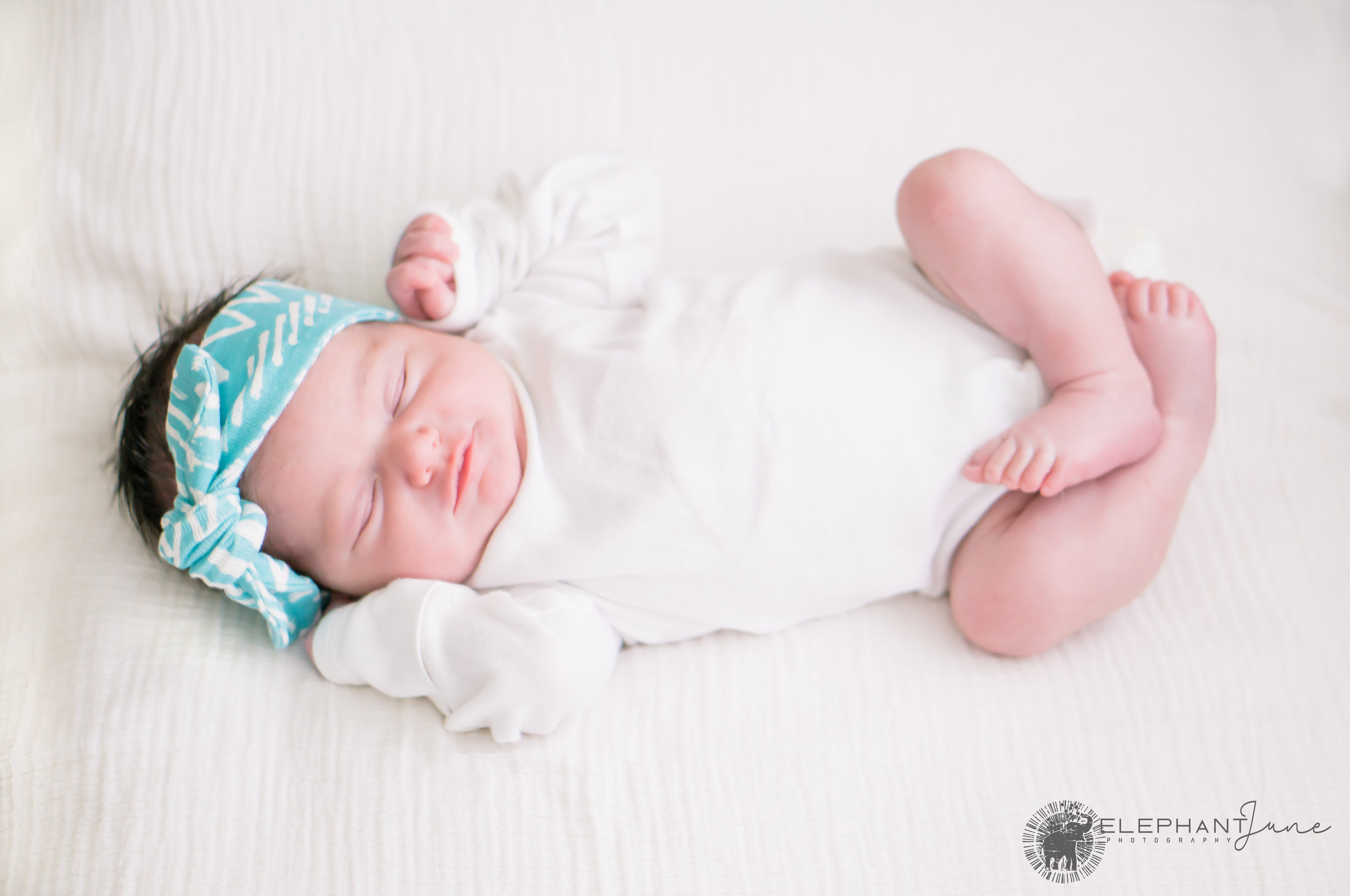 Elephant June Photography_Newborn_Willow_Full.jpg