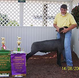 Grand Champion - @ Champaign County Fair 2009