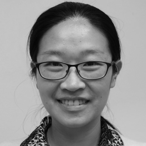 Dr Zhen Qiu   Research Associate in the Centre for Ultrasonic Engineering at Strathclyde University  Transducer Design and Fabrication Specialist at Dolfi Advisory Team