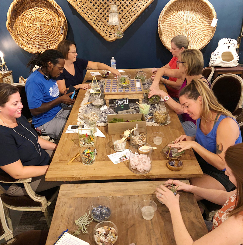 Plant Party at esd mT pLEASANT