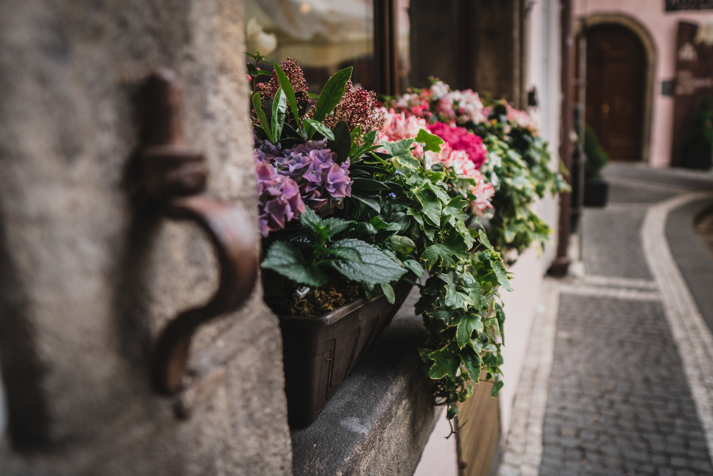 Window Boxes & Planters - We love making gorgeous window boxes and planters. Already have planters? Great, send us a photo of the boxes or planters you want refreshed and we'll send you an estimate, and install availability. You don't even have to be home! Pay online and come home to beautiful flowers.
