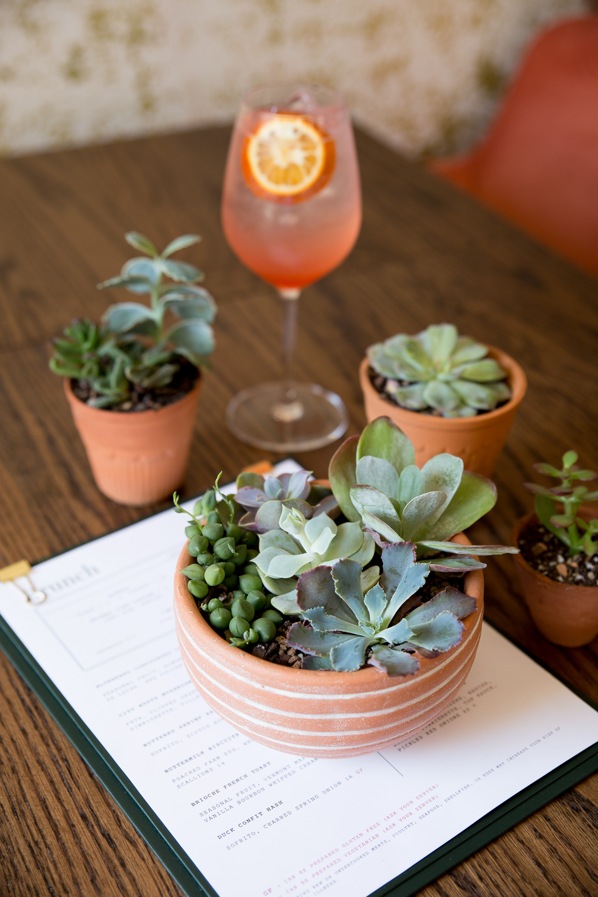 Succulent Sunday Party_Leaf Me Alone-3.jpg